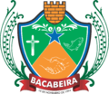 BRASAO BACABEIRA.png