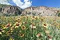 Backroads New Mexico (14393551016).jpg