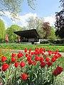 Bad Krozingen - Kurpark - panoramio - Baden de (4).jpg