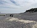 Baie Somme Hourdel - Cayeux-sur-Mer (FR80) - 2021-05-29 - 48.jpg