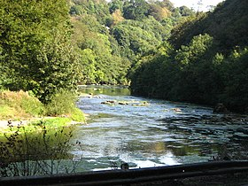 Bandon River view - geograph.org.uk - 552752.jpg