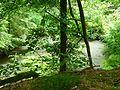 Basaltweg Tharandter Wald (4).jpg
