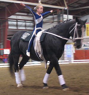 Unitard - Equestrian vaulters typically perform in unitards.