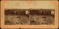 Battle of Chattanooga, by Kilburn, B. W. (Benjamin West), 1827-1909.png