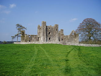 Bective Abbey - Bective Abbey