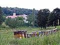 Beehives, Novo Hopovo Monostery.jpg