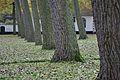 Beguinage - Brugge, Belgium - November 2, 2010.jpg