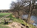 Bench on bank of River Ure, near Masham - geograph.org.uk - 1221848.jpg