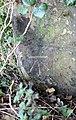 Benchmark on Landican Lane near Grange Farm.jpg