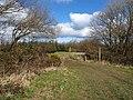 Berridon Woods - geograph.org.uk - 741081.jpg