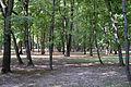 Białystok, park, po 1856, Dojlidy Fabryczne 26 - 010.jpg