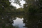 Big Walnut Creek 1.jpg