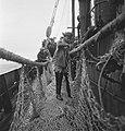 Bijschrift On board a Dutch trawler Aan boord van een Nederlandse vistrawler, Bestanddeelnr 935-3045.jpg