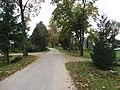 Bikūnai 28402, Lithuania - panoramio (14).jpg