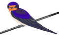 Bird on wire.png