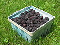 Black raspberries in a basket, angled view.jpg