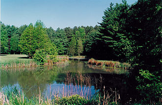 Delaware - The Blackbird Pond on the Blackbird State Forest Meadows Tract in New Castle County, Delaware