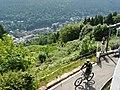 Blick auf Bad Wildbad vom Sommerberg - panoramio.jpg