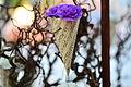 Blomsterfestival15 3.JPG