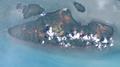 Boigu Island (Landsat).png