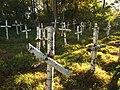Bolekhiv Sich riflemen mass grave-1.JPG