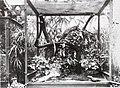 Bonn zoological bulletin (2010) (20394446825).jpg