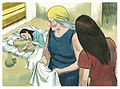 Book of Exodus Chapter 2-10 (Bible Illustrations by Sweet Media).jpg