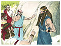 Book of Judges Chapter 15-7 (Bible Illustrations by Sweet Media).jpg