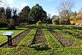 Botanischer Garten Braunschweig - Braunschweig, Germany - DSC04391.JPG