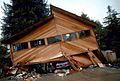 BoulderCreekLomaPrietaEarthquake.jpeg