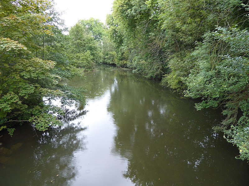 La Bouvade à son confluent avec la Moselle vue en direction de l'amont (sud).