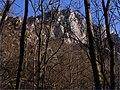 Bralá v lete zahalené korunami stromov ^ The Gorge in the summer, veiled canopy - panoramio.jpg