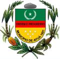 Brasão Afuá.png