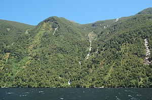 Browne Falls (Doubtful Sound).jpg