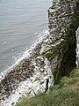 Buckton Cliffs - geograph.org.uk - 813718.jpg