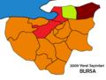 Bursa2009Yerel.png