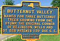 Butternut-Valley-named-for-three-butternut-trees-growing-from-one-stump-the-original-corner-of-the-Hillington-Wells-and-Otego-patents-1170-ft-due-SE.jpg
