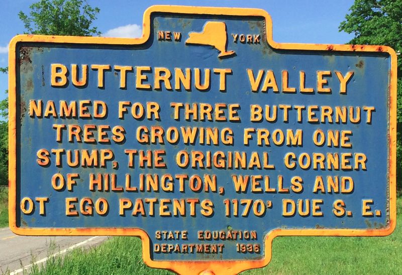 File:Butternut-Valley-named-for-three-butternut-trees-growing-from-one-stump-the-original-corner-of-the-Hillington-Wells-and-Otego-patents-1170-ft-due-SE.jpg