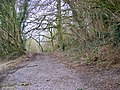 Byway, Castle Hill - geograph.org.uk - 1160198.jpg