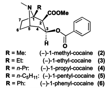 C1-tropane cocaine analogues.png