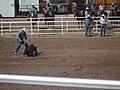 CFD Tie-down roping Dean Geeson.jpg