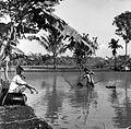 COLLECTIE TROPENMUSEUM Proeven met visteelt in een vijver te Tjinindi Java door de U.N. (zo wordt de visteelt in Azië verbeterd en dit draagt bij aan de voorziening van proteïne in het voedsel van de bevolking) TMnr 10013512.jpg