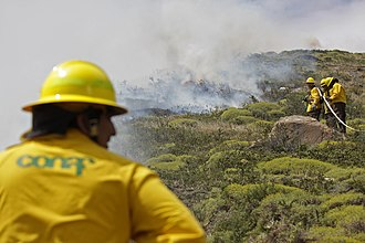 National Forest Corporation (Chile) -  CONAF firefighters in Valparaiso, Chile