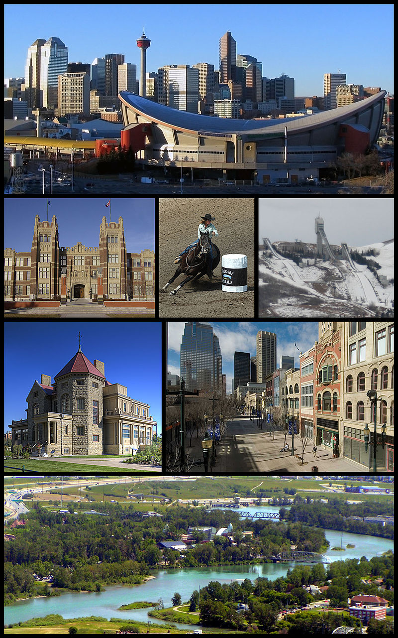 Which one is better to live in, Calgary or Edmonton? Why?