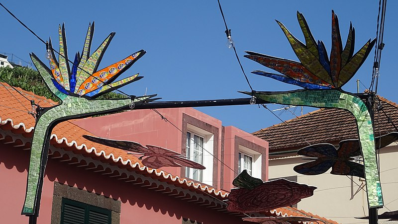 File:Camara de Lobos cans recycled to decorative strelitzia (38043225776).jpg