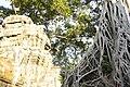 Cambodia (24207411032).jpg