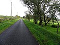 Camcosy Road - geograph.org.uk - 2123486.jpg