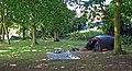 Camping de Canterbury - panoramio.jpg