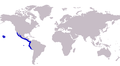 Caranx caballus distribution map.png