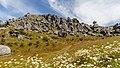 Castle Hill, Canterbury, New Zealand 02.jpg